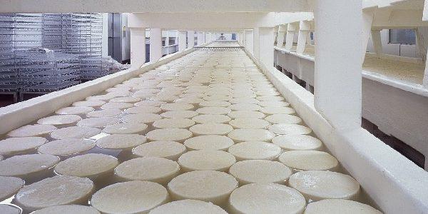 Limpieza y desinfección en la industria alimentaria en áreas de almacenamiento y producción